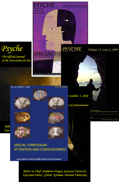 Archive of Journal Psyche